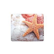 ACME Plastic Mouse Pad, sea shells